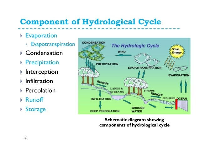 Water cycle and water budget