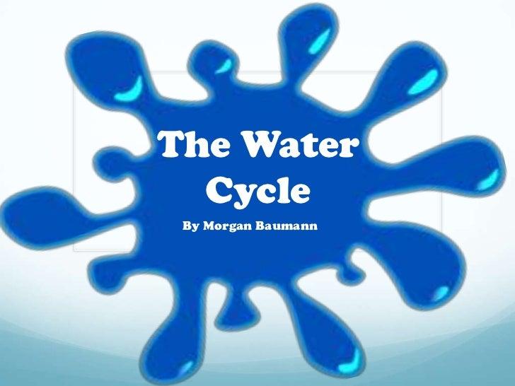 The Water  Cycle By Morgan Baumann