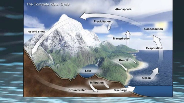 THE WATER CYCLE IN HAWAII 12 COMPONENTS OF Evaporation Transpiration Condensation Precipitation Infiltration