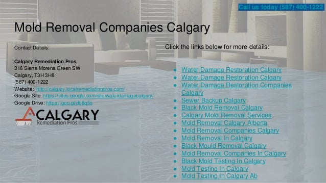 water and sewer companies in calgary