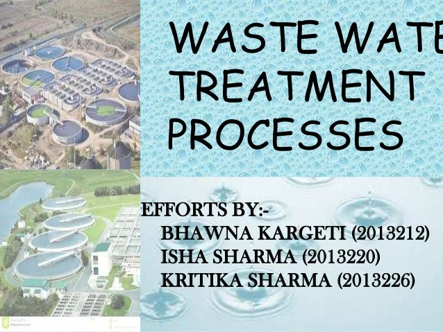 WASTE WATE TREATMENT PROCESSES EFFORTS BY:- BHAWNA KARGETI (2013212) ISHA SHARMA (2013220) KRITIKA SHARMA (2013226)