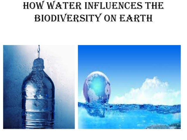 essay water precious liquid Water is a precious, yet finite resource essential for life, with no adequate substitute supplying and allocating water of adequate quality and in sufficient.