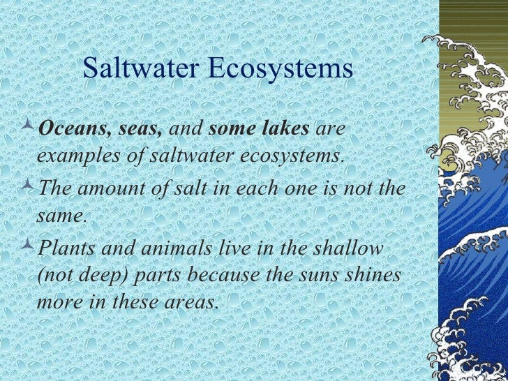 ecosystems an overview of the ocean Ocean pollution, also known as marine pollution, is the spreading of harmful substances such as oil, plastic, industrial waste and chemical particles into the ocean.
