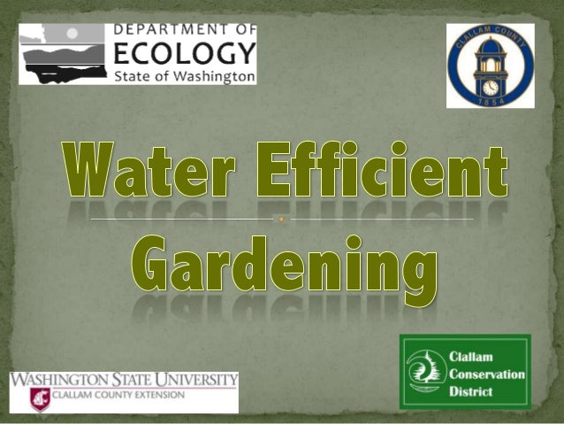 """""""Water efficient gardening"""" simply means designing your gardens and landscaping in a way that makes more efficient use of ..."""