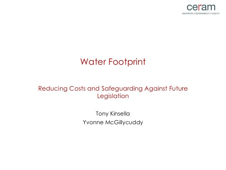 Water Footprint Reducing Costs and Safeguarding Against Future Legislation Tony Kinsella Yvonne McGillycuddy