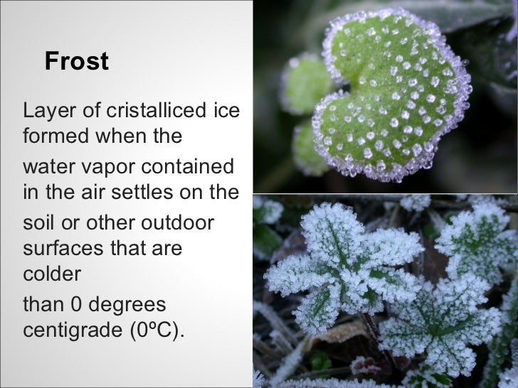 FrostLayer of cristalliced iceformed when thewater vapor containedin the air settles on thesoil or other outdoorsurfaces t...