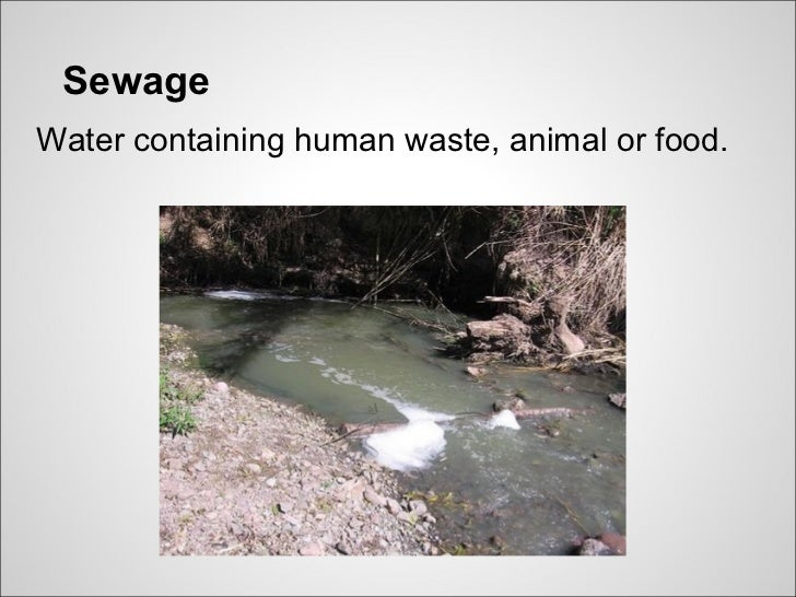 SewageWater containing human waste, animal or food.