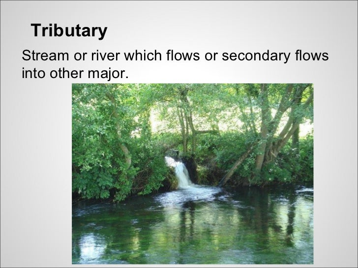 TributaryStream or river which flows or secondary flowsinto other major.