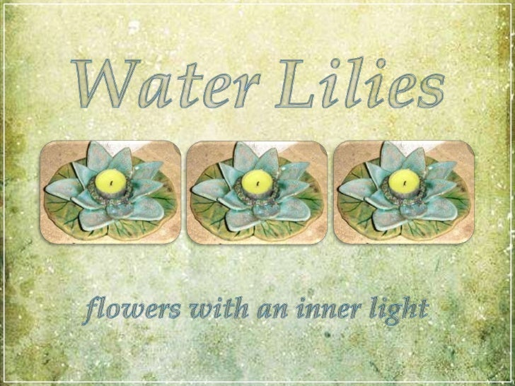 WaterLilies<br />flowers with an inner light<br />