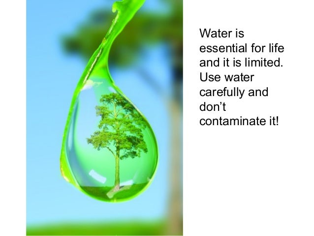 water the life giving substance This science fair project focuses on the use of a conductivity device that will determine if a substance dissolved in water can or cannot conduct electricity.