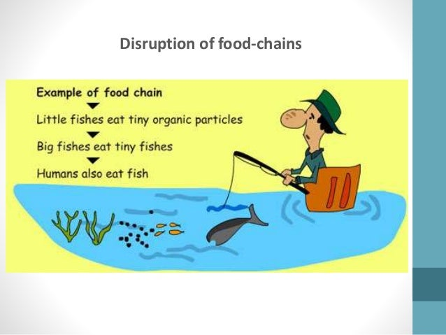 effects of toxic pollutants on food chains environmental sciences essay Environmental science: toward a sustainable future:  food chains, food webs, and  213 impacts of air pollutants 555 effects on human health 556.