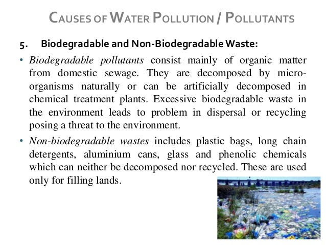 an example of a biodegradable pollutant