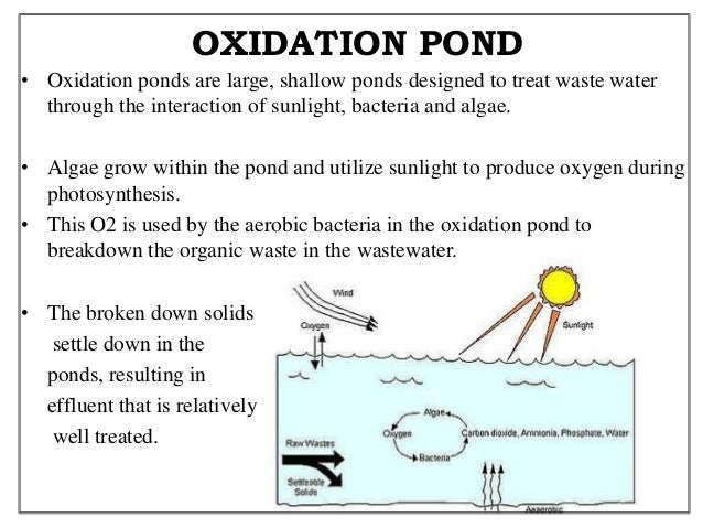 Water pollution abatement technology for Design of oxidation pond ppt