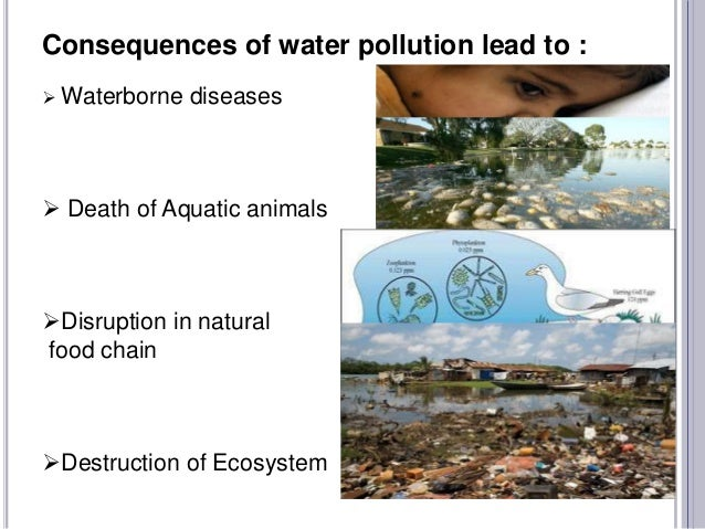water pollution and its effects on Full-text paper (pdf): sources of aquatic pollution, its effects on fish & fisheries and control options.