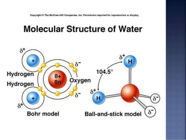 Structure of water molecule ppt lovely bc line chapter 1 a lipid.