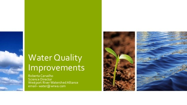 Water Quality Improvements Roberta Carvalho Science Director Westport RiverWatershed Alliance email– water@wrwa.com