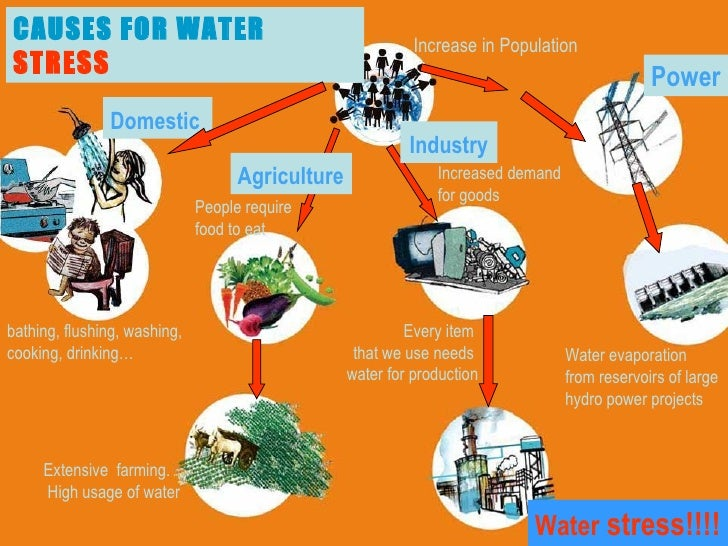 What Are the Different Types of Water Conservation Systems?