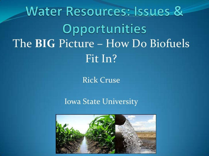 The BIG Picture – How Do Biofuels             Fit In?              Rick Cruse         Iowa State University