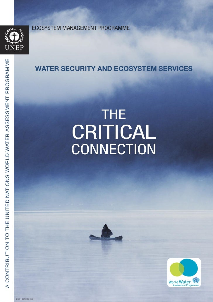 ECOSYSTEM MANAGEMENT PROGRAMMEA CONTRIBUTION TO THE UNITED NATIONS WORLD WATER ASSESSMENT PROGRAMME                       ...