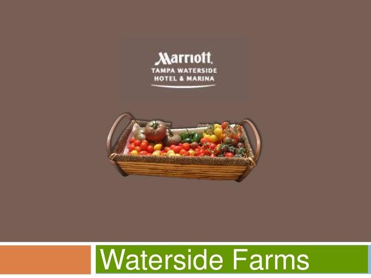 Waterside Farms
