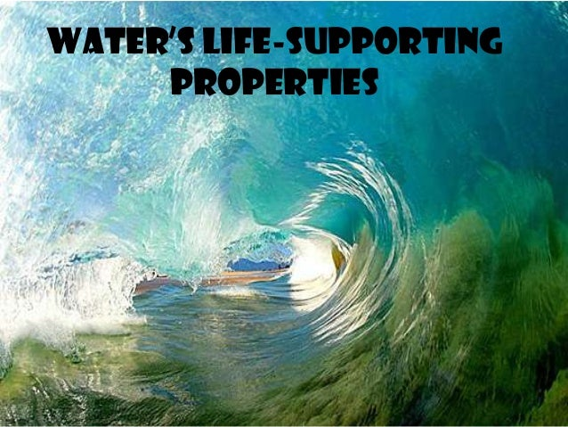Water's Life-Supporting Properties
