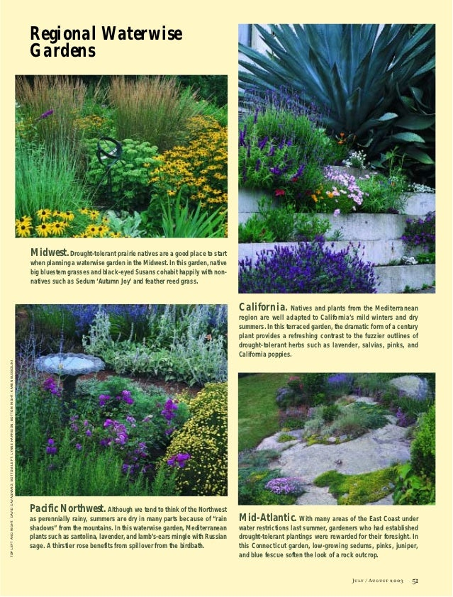 Waterwise gardening an efficient garden design can reduce for Water wise garden designs south africa