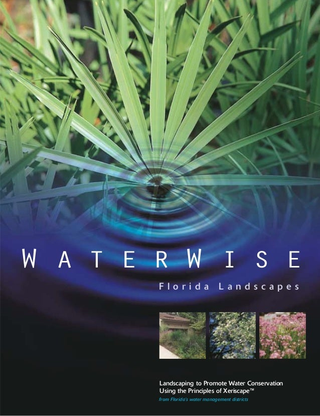 Waterwise Florida Landscapes Landscaping To Promote Water Conservati