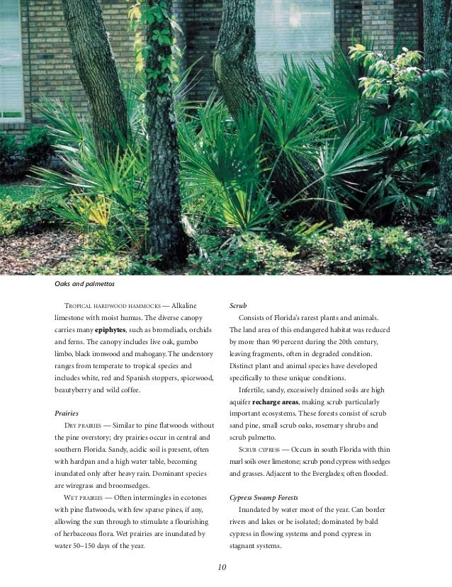 Waterwise Florida Landscapes Landscaping To Promote Water