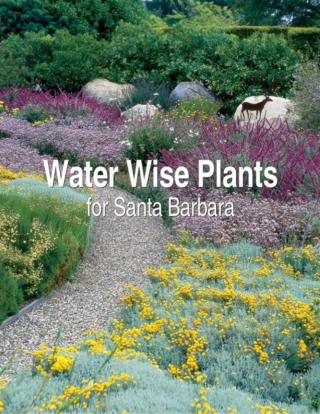 Water Wise Plants   for Santa Barbara                       2