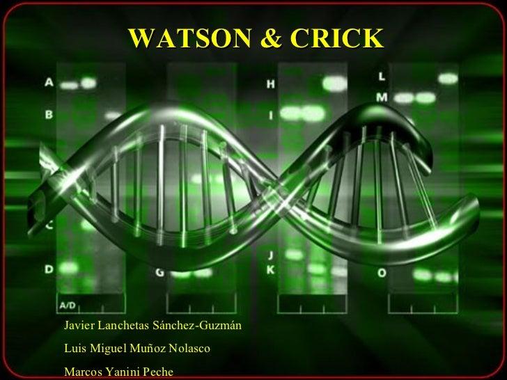 WATSON & CRICK Javier Lanchetas Sánchez-Guzmán Luis Miguel Muñoz Nolasco Marcos Yanini Peche