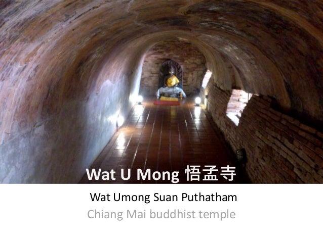 Wat U Mong 悟孟寺 Wat Umong Suan Puthatham Chiang Mai buddhist temple