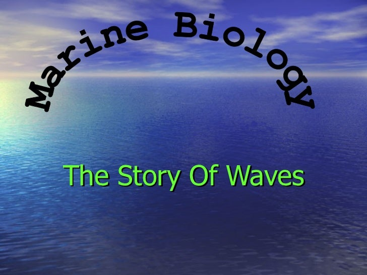 The Story Of Waves Marine Biology