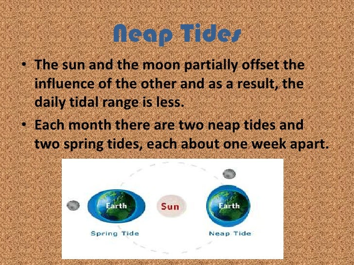 Waves and tides 16 2 ppt vocab br 9 sciox Image collections