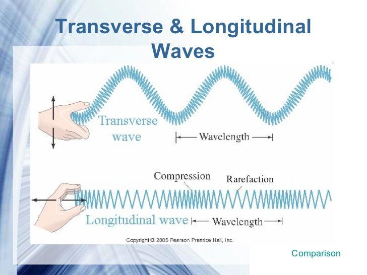 ben clarke apprentice dating in the dark: are sound waves longitudinal or transverse yahoo dating