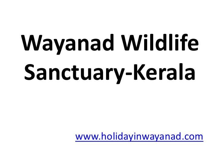 Wayanad Wildlife Sanctuary-Kerala<br />www.holidayinwayanad.com<br />