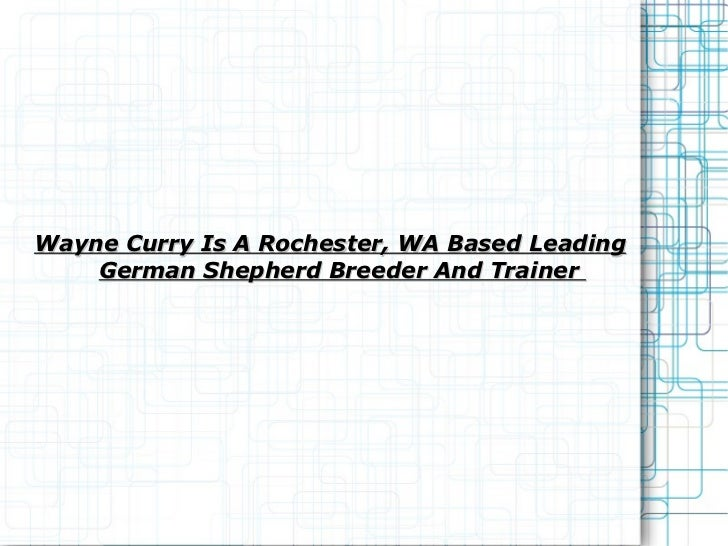 Wayne Curry Is A Rochester, WA Based Leading German Shepherd Breeder And Trainer