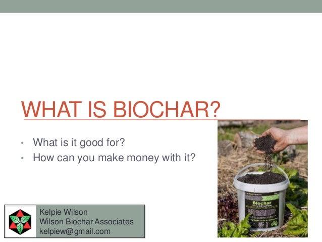 WHAT IS BIOCHAR?• What is it good for?• How can you make money with it?   Kelpie Wilson   Wilson Biochar Associates   kelp...