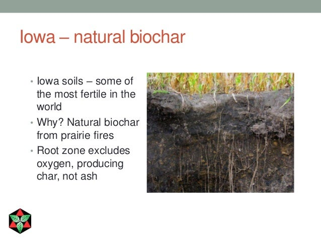 of root showing relationship hair and soil water retention