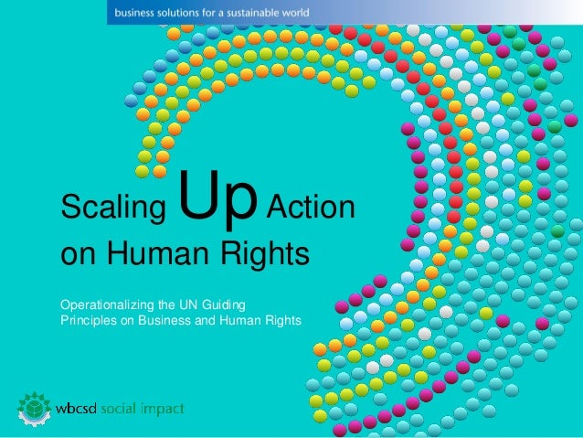 Scaling UpAction on Human Rights  Operationalizingthe UN GuidingPrincipleson Business and HumanRights