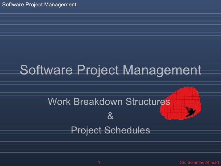 Software Project Management Work Breakdown Structures  & Project Schedules