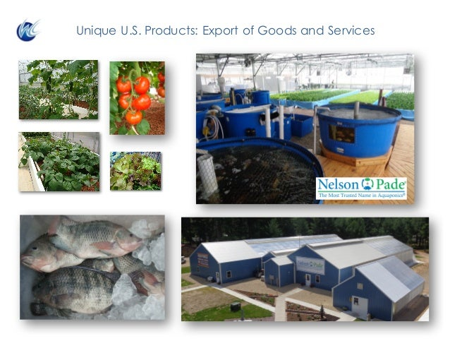 Unique U.S. Products: Export of Goods and Services