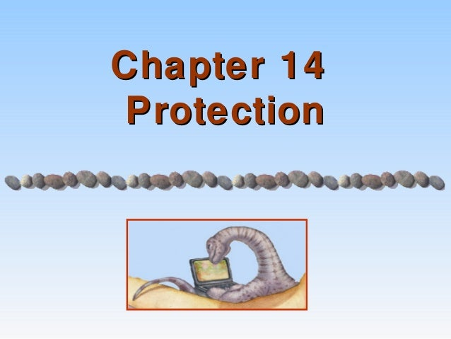Chapter 14 Protection