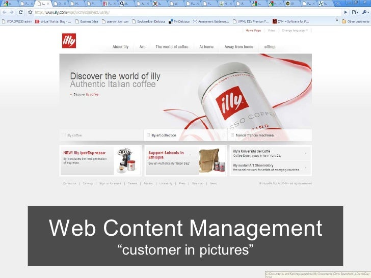 "Web Content Management      ""customer in pictures"""