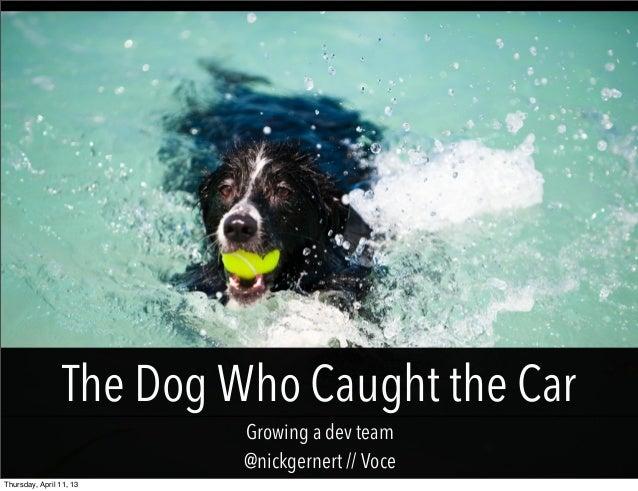 The Dog Who Caught the Car                          Growing a dev team                          @nickgernert // VoceThursd...