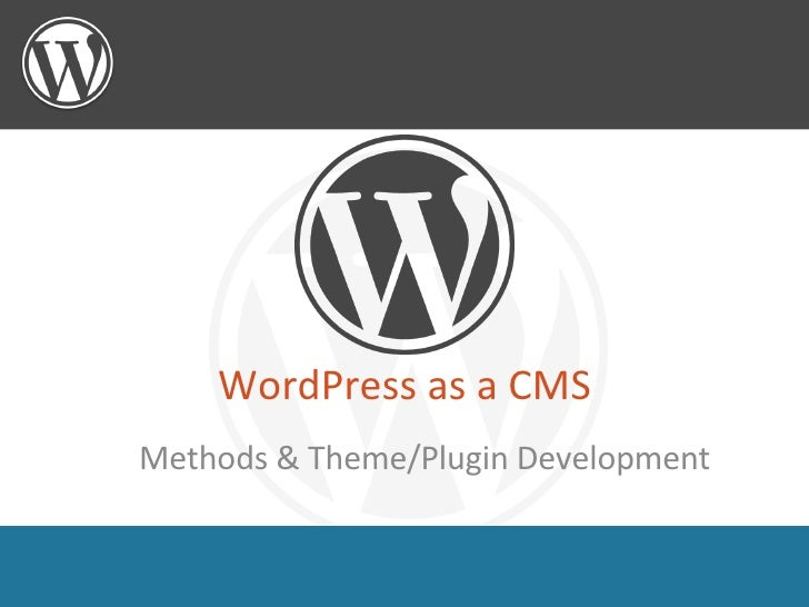 WordPress as a CMS <ul><ul><li>Methods & Theme/Plugin Development </li></ul></ul>