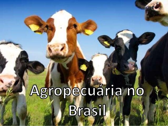 Denomina-se espaço agrário a área ocupada com a produção agrícola (vegetal, pastagens e florestas), habitações dos agricul...