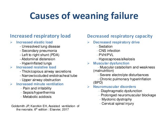 Weaning From Mechanical Ventilation And Extubation By Dr Tareq