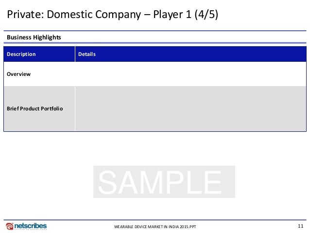 11 SAMPLE Private: Domestic Company – Player 1 (4/5) Business Highlights Description Details Overview Brief Product Portfo...