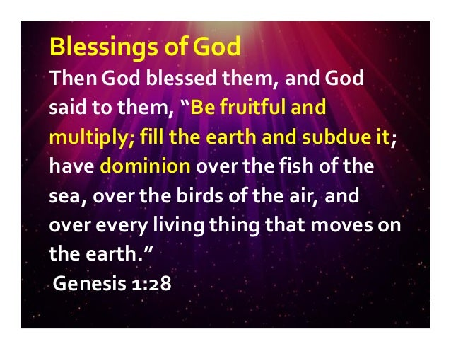 Image result for Genesis 1:28