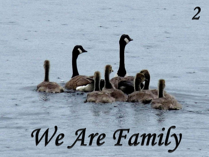2<br />We Are Family<br />